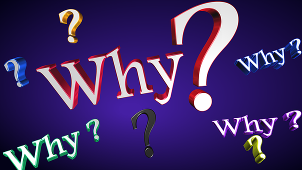 why-should-i
